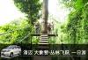 泰国清迈自由行包车  泰国清迈大象营 丛林飞跃 泰式按摩 Central Festival  中文/英文包车一日游
