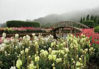 泰国素帖山国家公园
