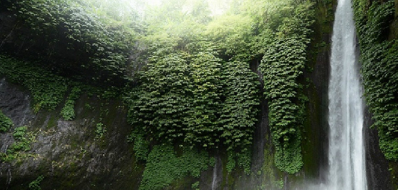 巴厘岛姆杜克瀑布