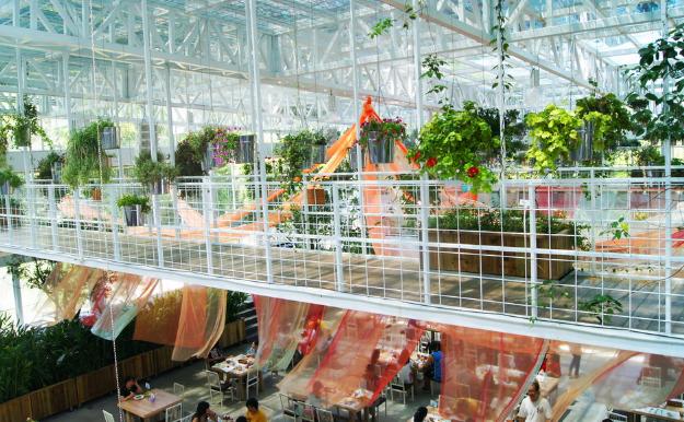 台湾芳香植物博物馆