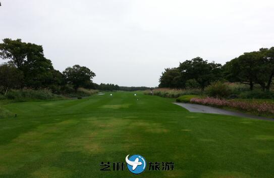 韩国Elysian济州高尔夫球场  韩国高尔夫球场包车翻译
