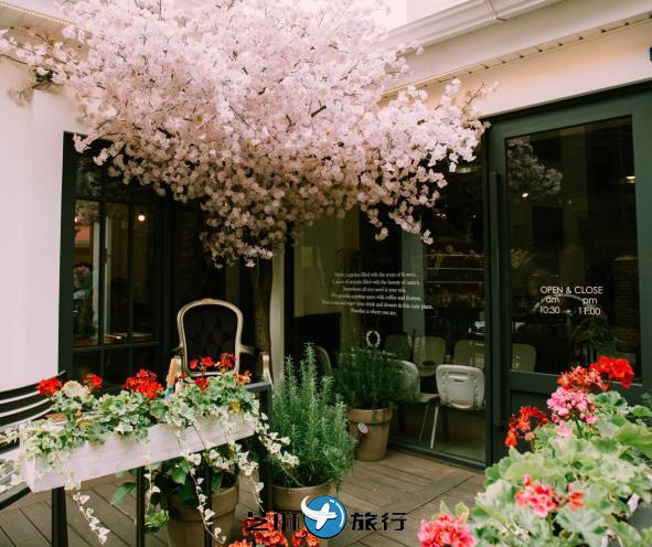 韩国弘大的网红咖啡厅 弘大SNS上人气火爆的咖啡厅