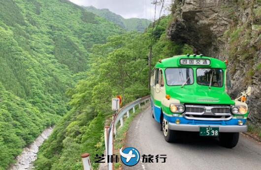 复古牛头巴士悠然穿梭秘境 怀旧风情令日本旅游游客络绎不绝