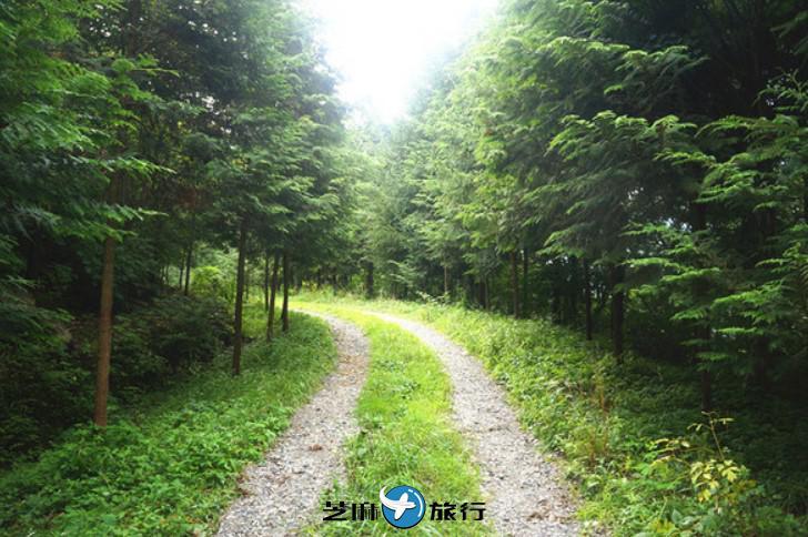 韩国首尔前往全罗北道完州郡交通方式介绍